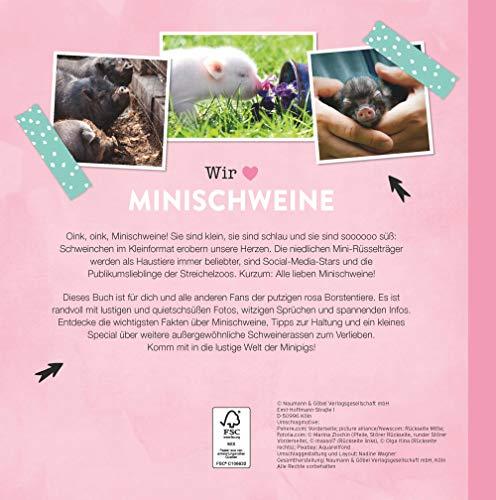 Quietschsüße Minischweine: Die lustige Welt der Mini-Pigs im einzigartigen Fan-Buch - 2