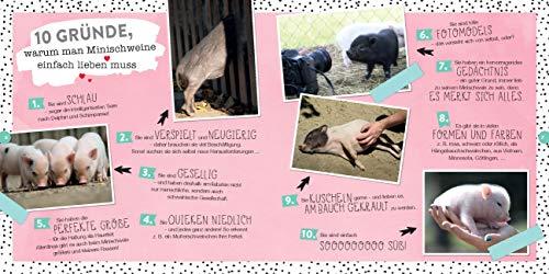 Quietschsüße Minischweine: Die lustige Welt der Mini-Pigs im einzigartigen Fan-Buch - 4