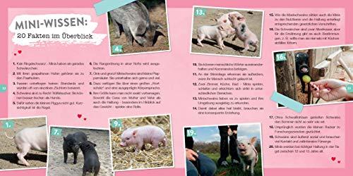 Quietschsüße Minischweine: Die lustige Welt der Mini-Pigs im einzigartigen Fan-Buch - 6